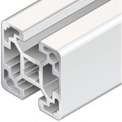 Profilo in alluminio 40x40L 2N