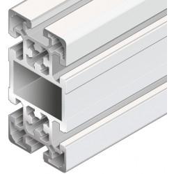 Profilo in alluminio 50x100L